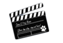 Dog fun and training web cams